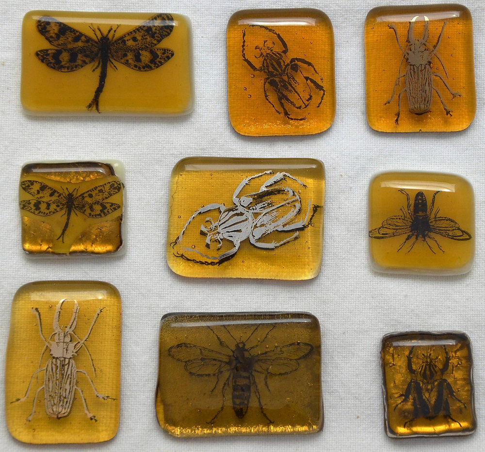 All Together Now!  All 9 tests from the Suspended in Amber tutorial series.  To learn about basic technique and firing schedule, read Part 1 of our series.  Details about each of the 9 different insects are described in Part 2 and Part 3 of the series.