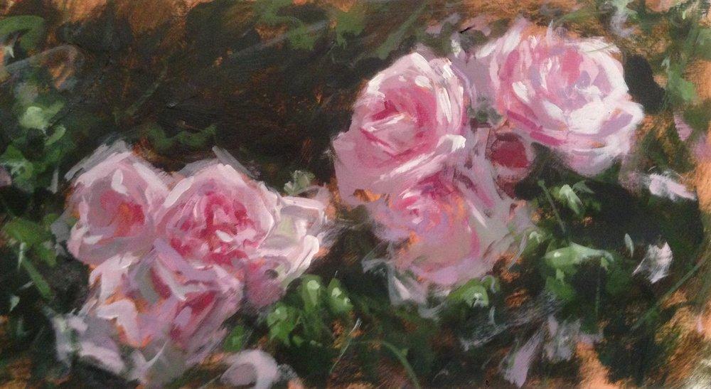 English Summer Roses
