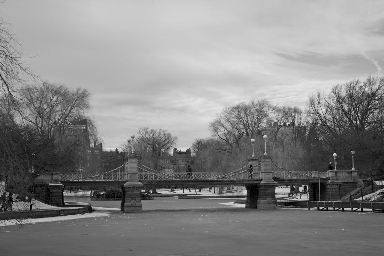 Lagoon bridge. #photo #Boston