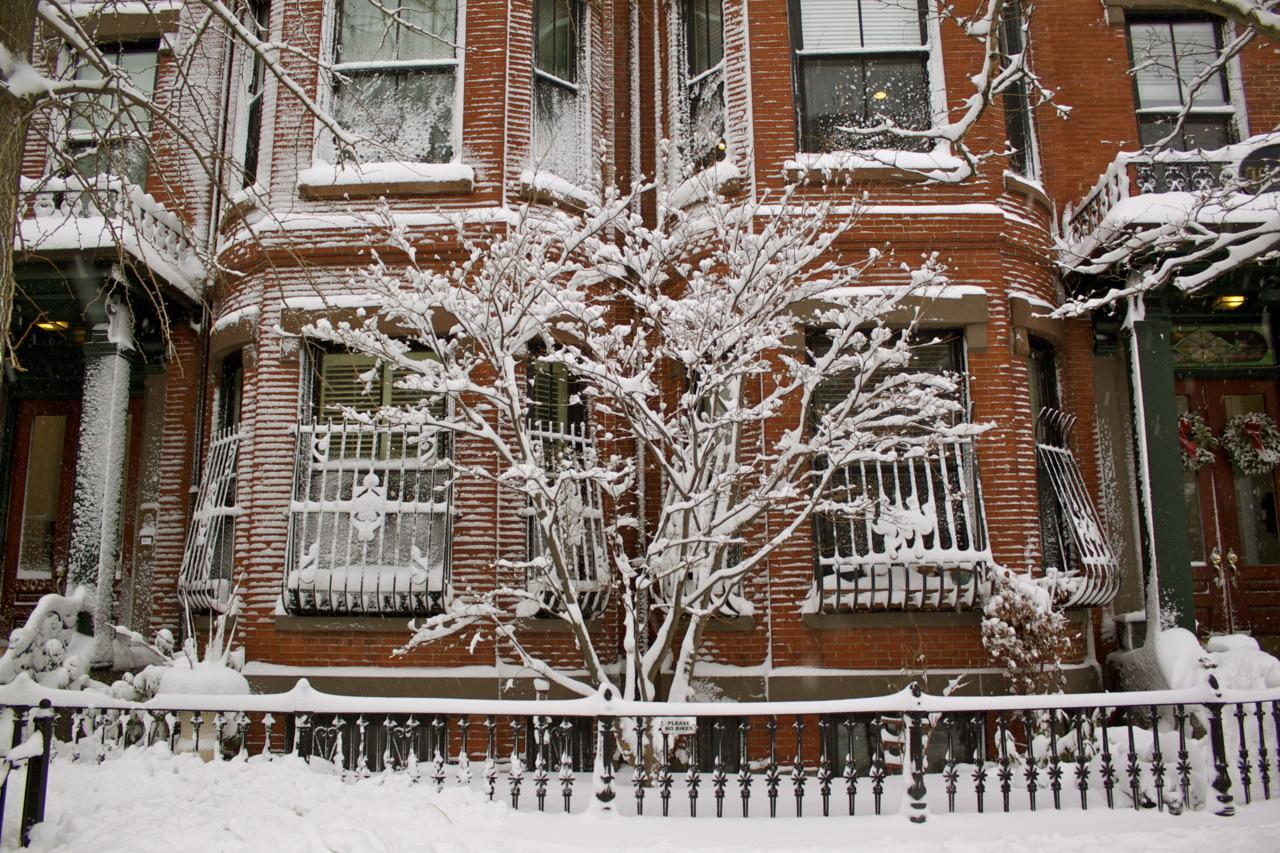 Snow day in Boston.