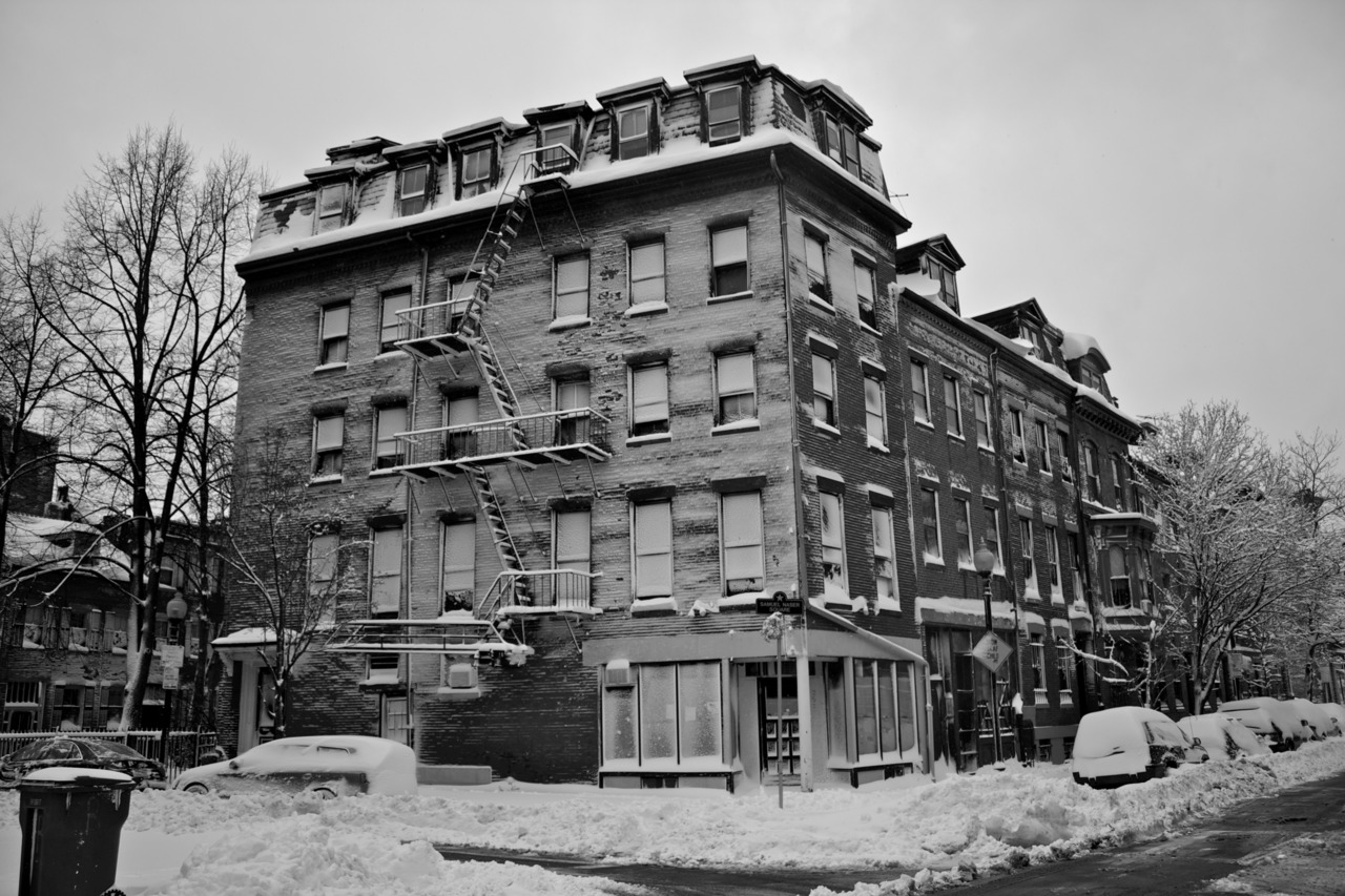 Snowy brownstones.  Now we know which way the wind was blowing.