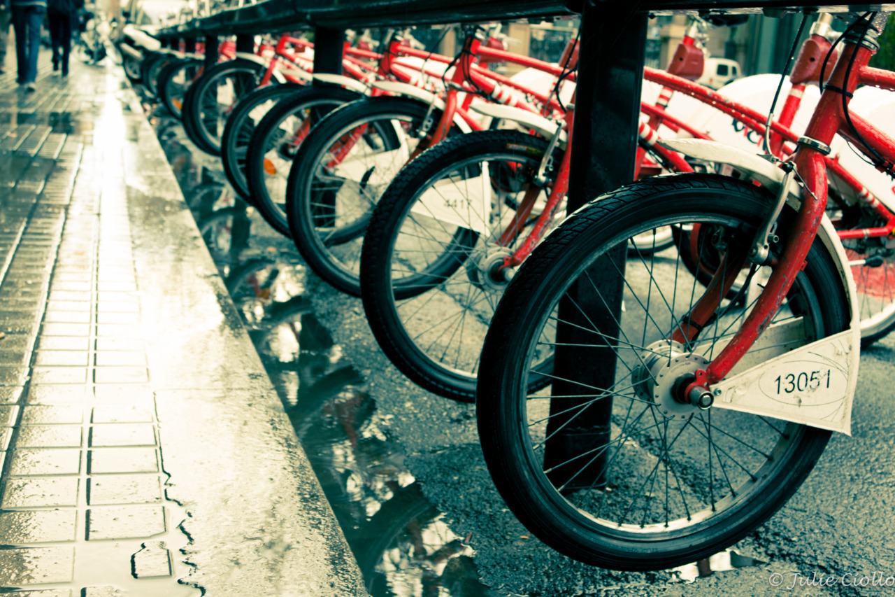 Bicing, Barcelona's bike-sharing program, has a huge presence in the city.  Sadly, they are not available to tourists.