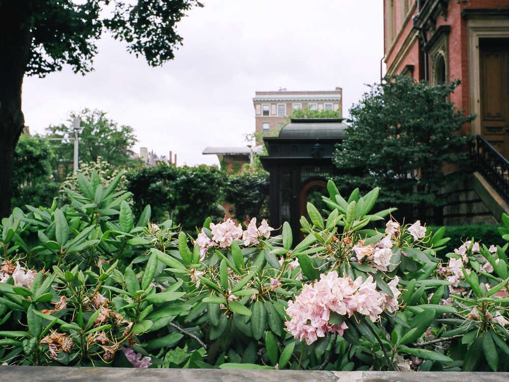 LeicaM6_Portra400-165.jpg