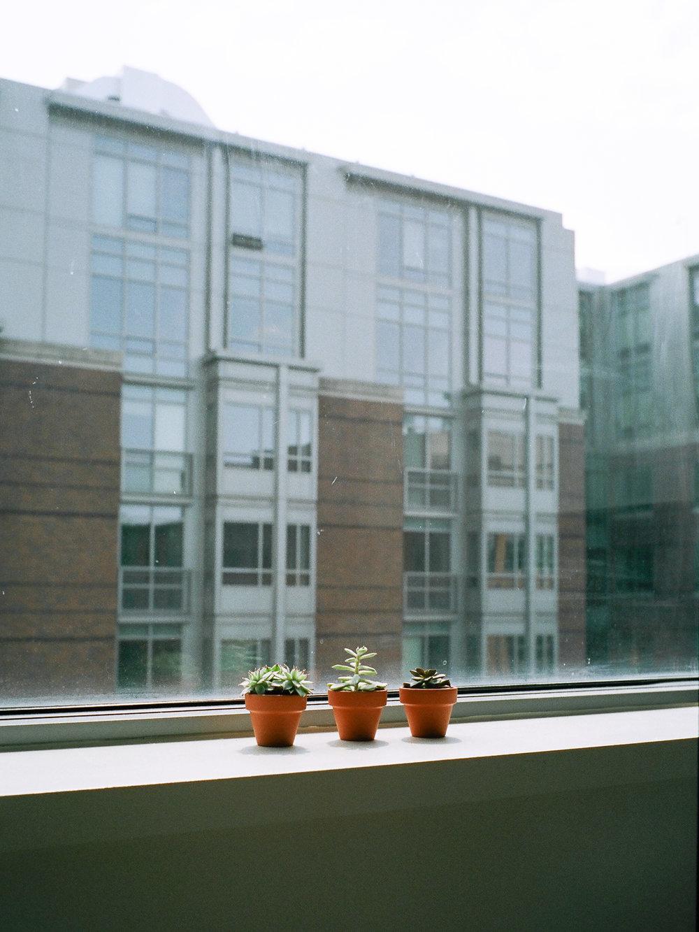 LeicaM6_Portra400-395.jpg