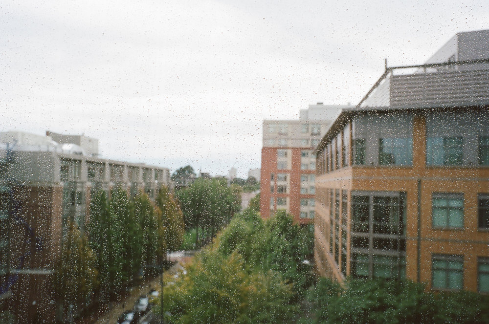 LeicaM6_Portra400-486.jpg