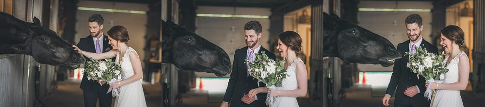 Bride and Groom share a laugh with an RNC horse during their Newfoundland Wedding photography