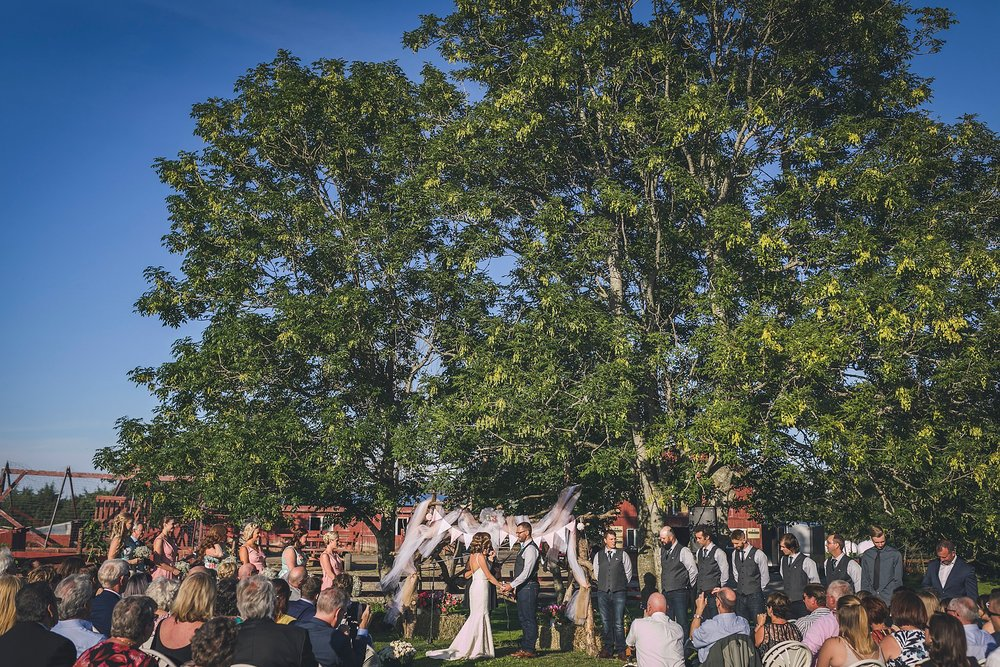 St. John's, Newfoundland Wedding ceremony held at Lester's Farm