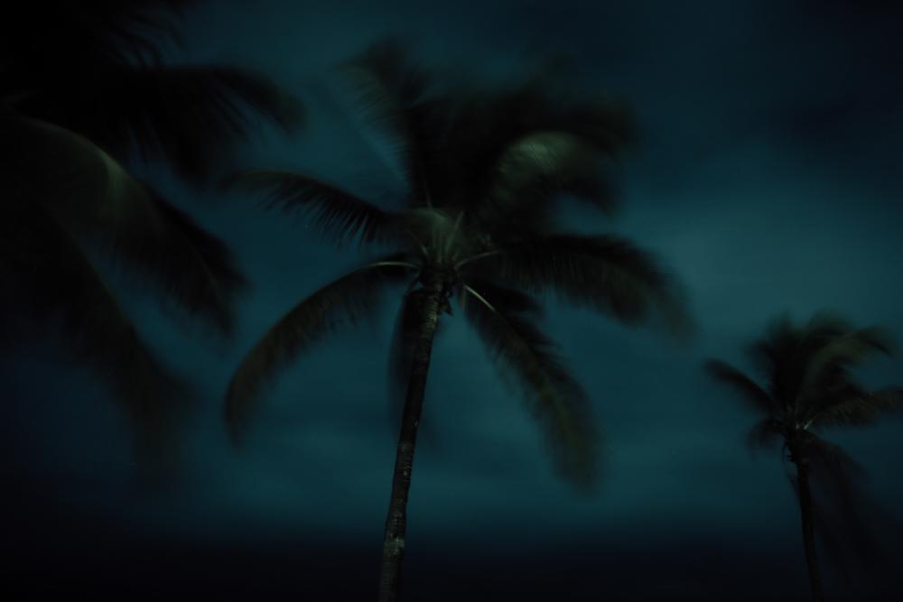 Miami Park-6347.jpg