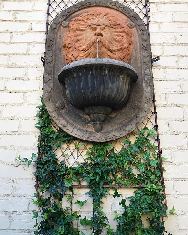 Layering with vintage iron, ivy and concrete.  #landscapedesign #waterfeature #serenity_nature #nature #concrete #courtyard #courtyard design #calm #relaxing_time