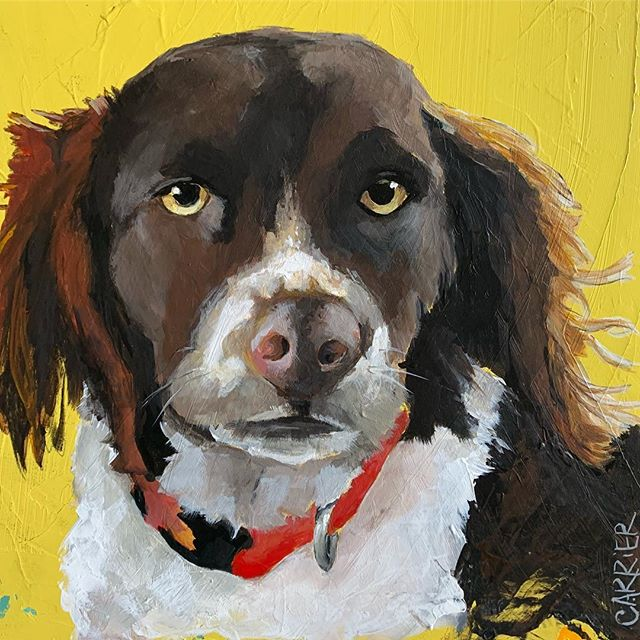 Pippin #painting #dog🐶 #acrylic #original #studiowork #angiecarrierart #carriercollective #wallart