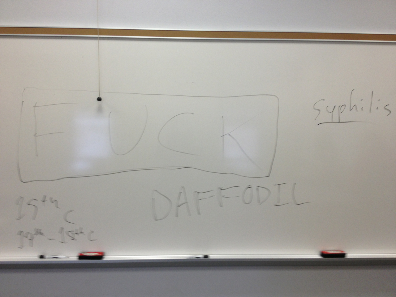 This is what the whiteboard in my classroom looked like at the end of class this morning.