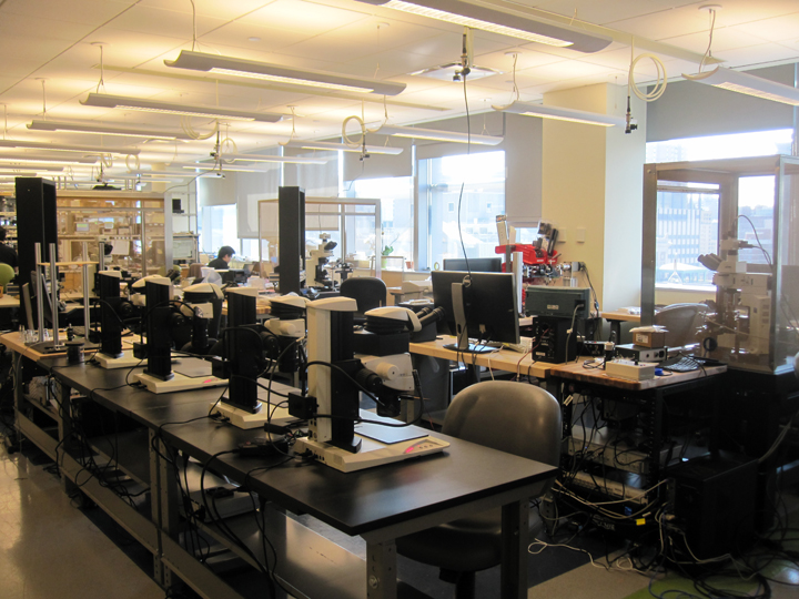 The Schnagel lab, September 2014
