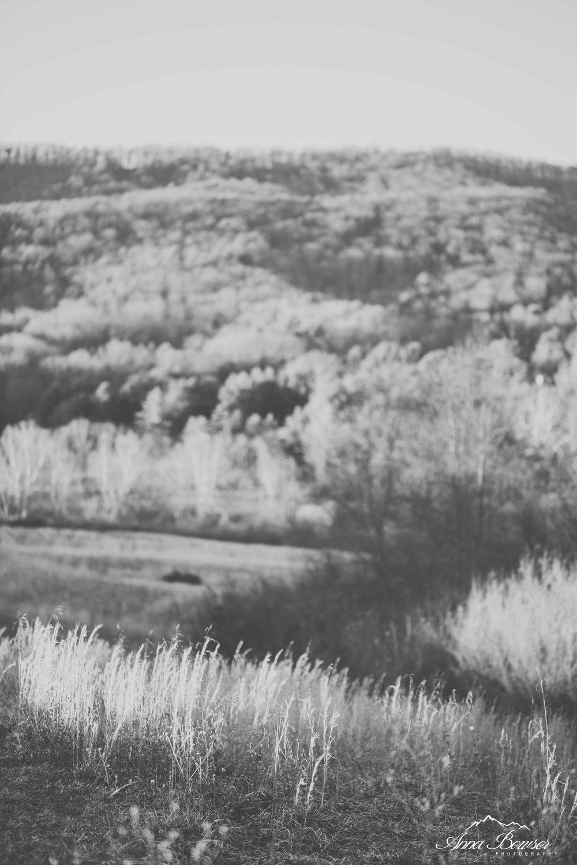 heritagepark-annabowserphotography-blacksburgweddingphotographer-40.jpg