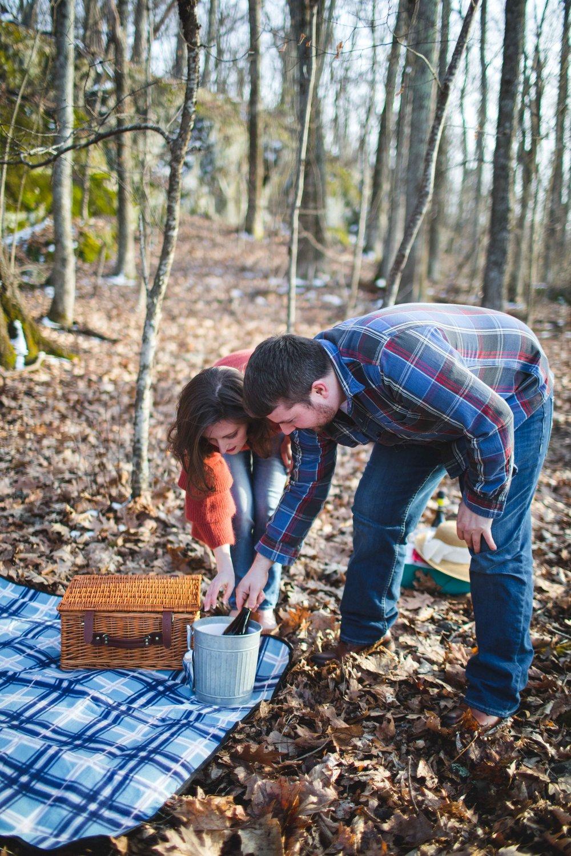shenandoah-national-park-engagement-shenandoah-wedding-photographer-2.jpg
