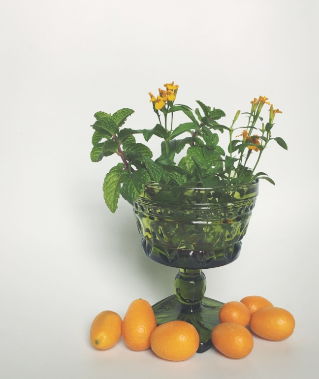 Kumquats from the store,and herbs from the garden (Sweet Mint & Mexican Tarragon).