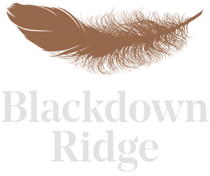 Blackdown Ridge