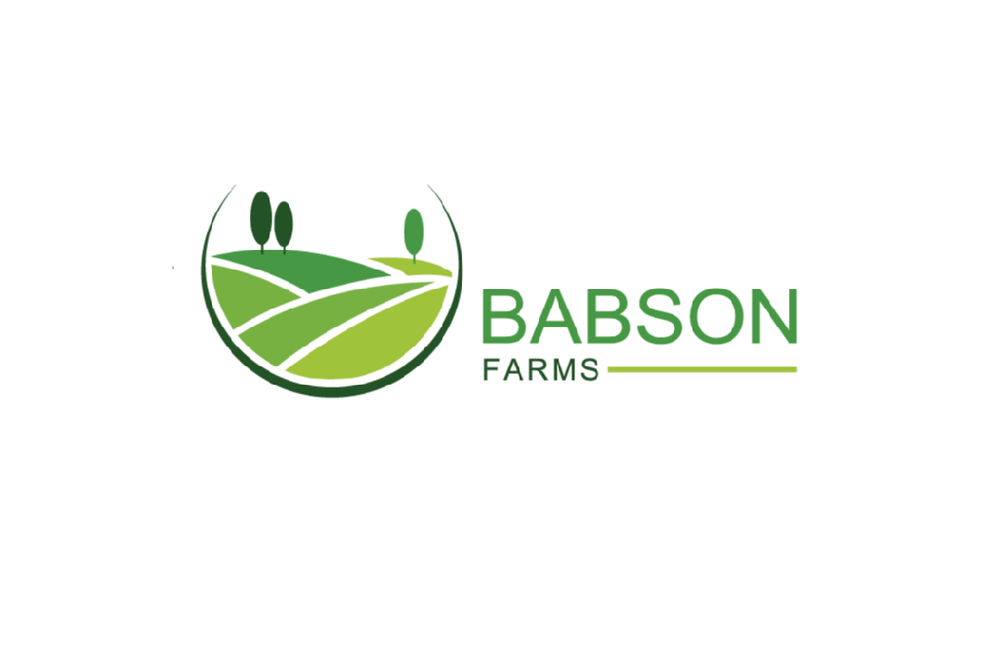 BabsonFarms.png