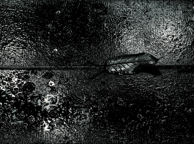 1609_0251-Edit.jpg