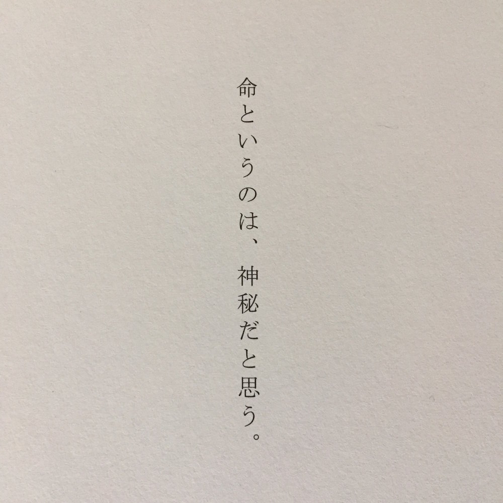 mystery of life.JPG