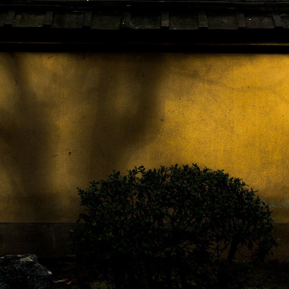 WABI SABI: FRAGILE BEAUTY OF FEEBLE LIGHT