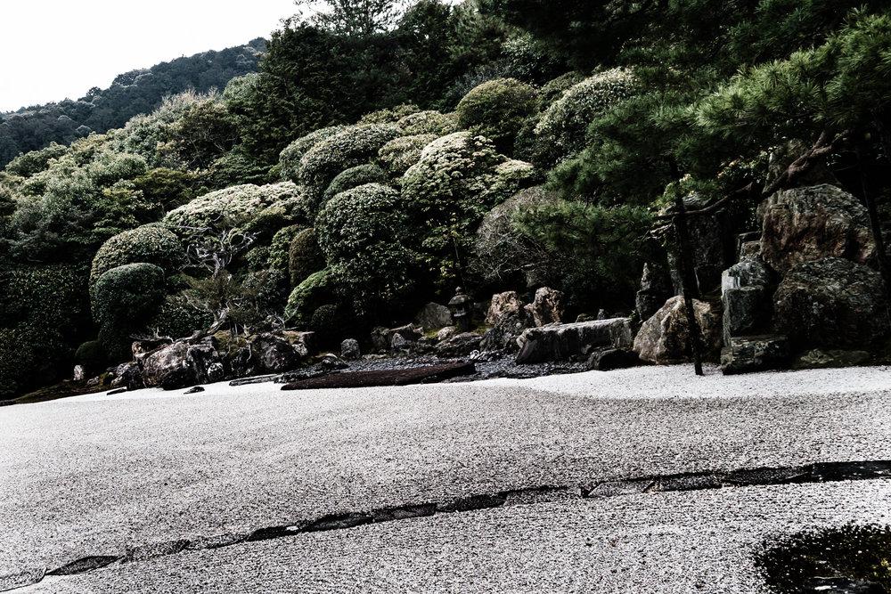 shizen-5.jpg
