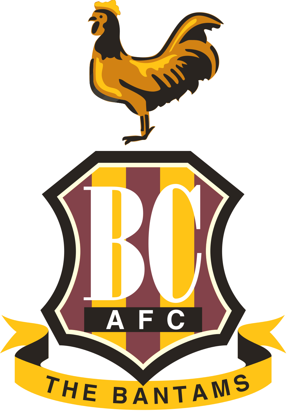 WITH THE GODS CLOTHING - BRADFORD CITY FC