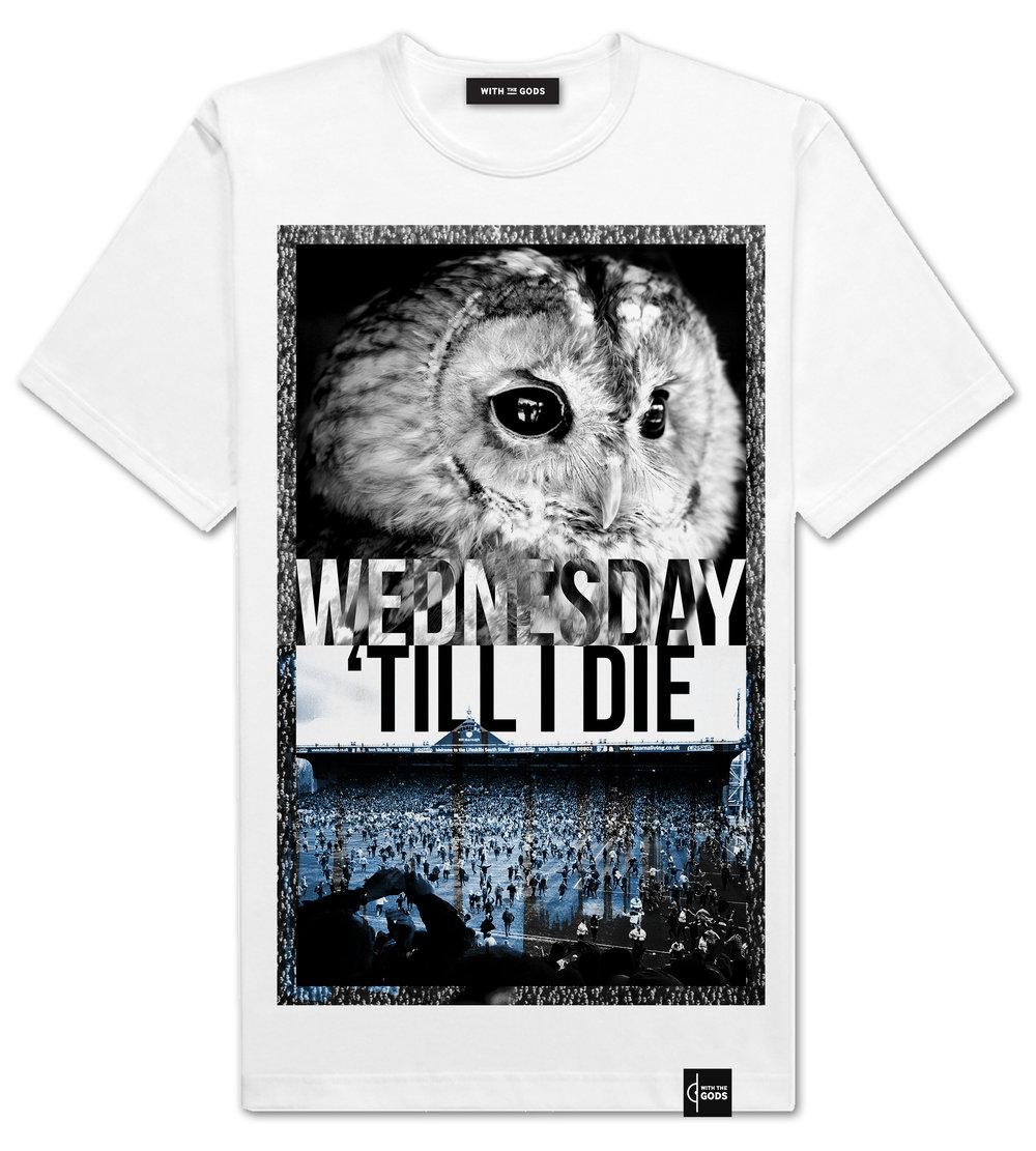 WEDNESDAY OWL WEB.jpg