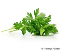 parsley.jpeg