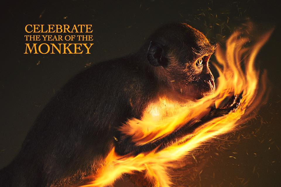 Year of the Monkey, 2016