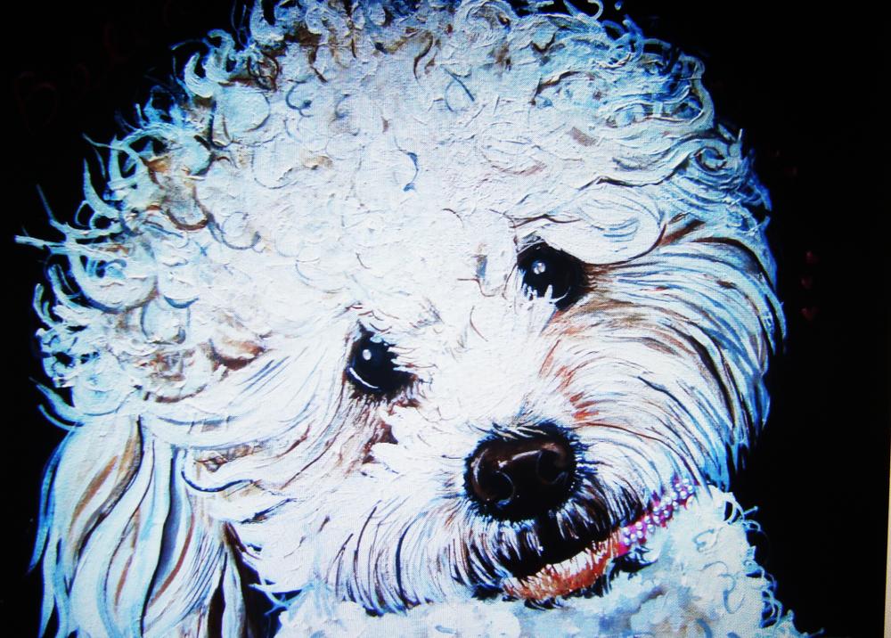 webdoggy2.jpg