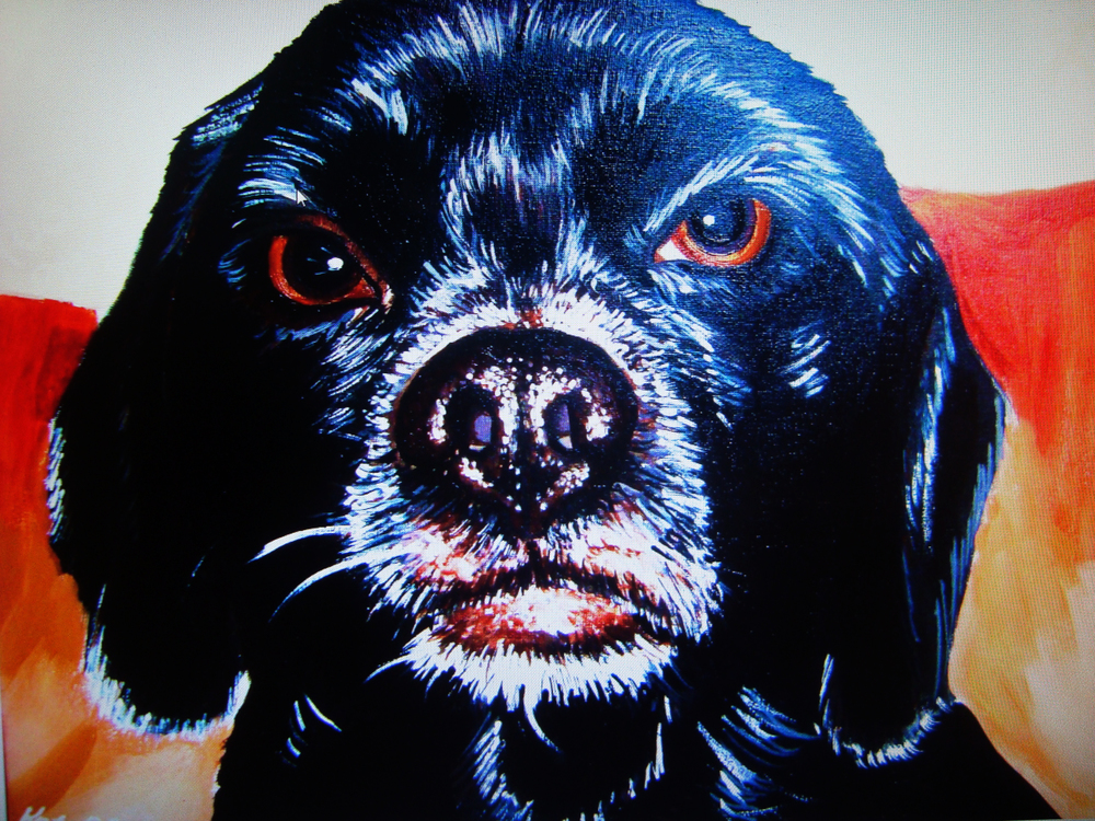 webdoggy6.jpg