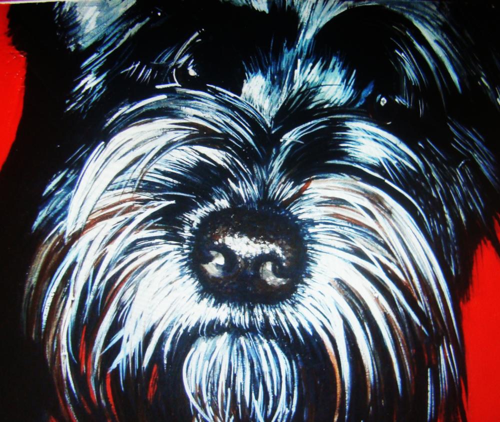 webdoggy7.jpg
