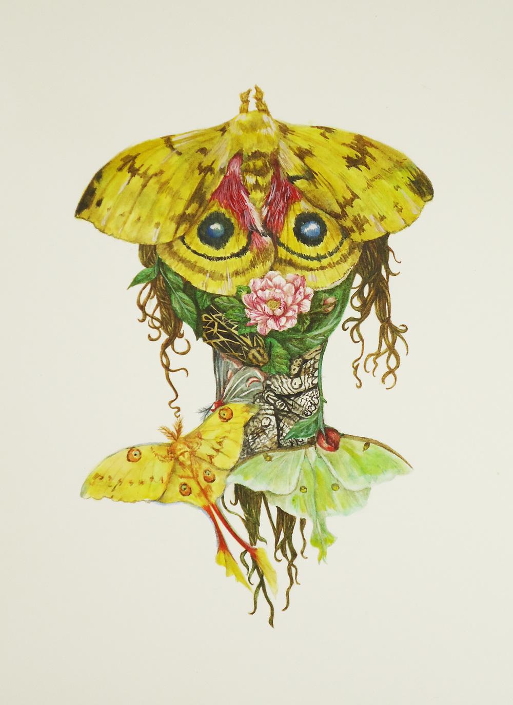 Moth Face.JPG