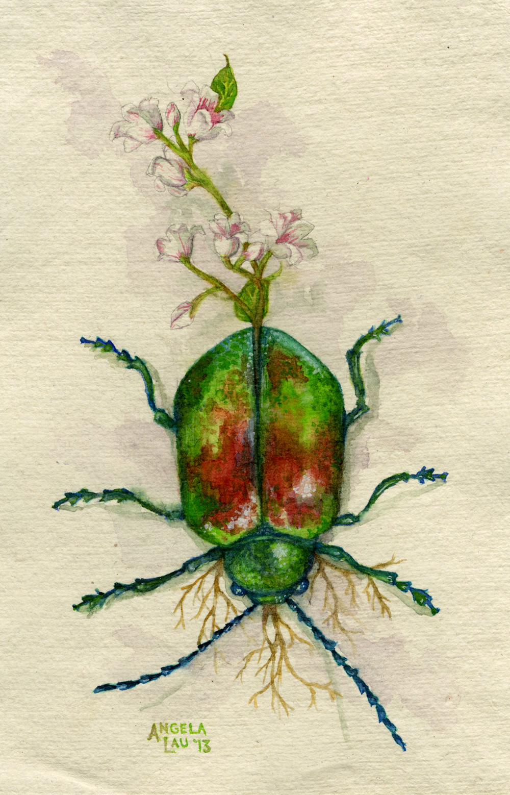 Beetle Watercolor on paper 2013 Diet of a scarab beetle.