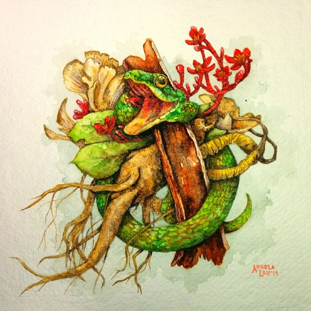 #natural medicine is done! #botanical #plants #roots #ginseng #snakes #art  #watercolor #painting #angelalaudraws #illustration