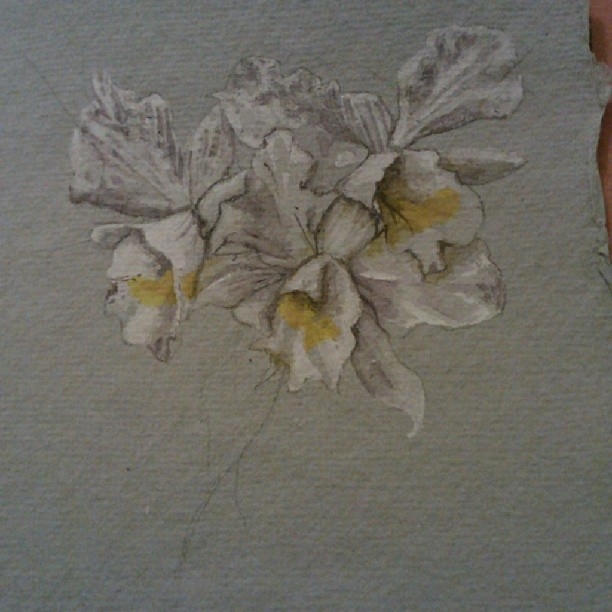 For sale soon! Nothing dead this time #orchid #watercolor #painting #artinprogress #art #flower #botanical