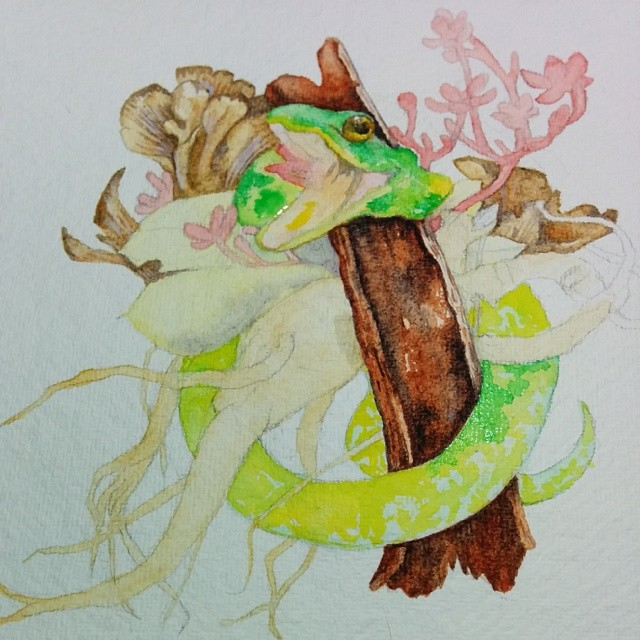 Natural medicine #snakes #botanical #illustration #artinprogress #art #watercolor #painting #angelalaudraws