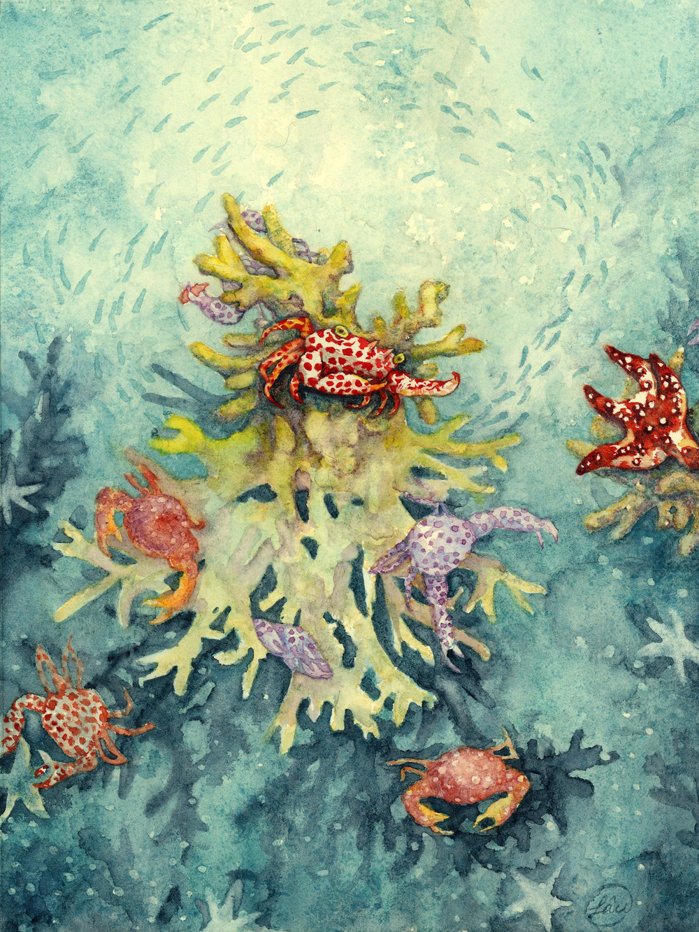 Crabs and Coral  Watercolor on linen paper 2014  Based on an article on how crabs protect the coral reefs from being viciously consumed by starfishes.  http://smithsonianscience.org/2014/09/32538/