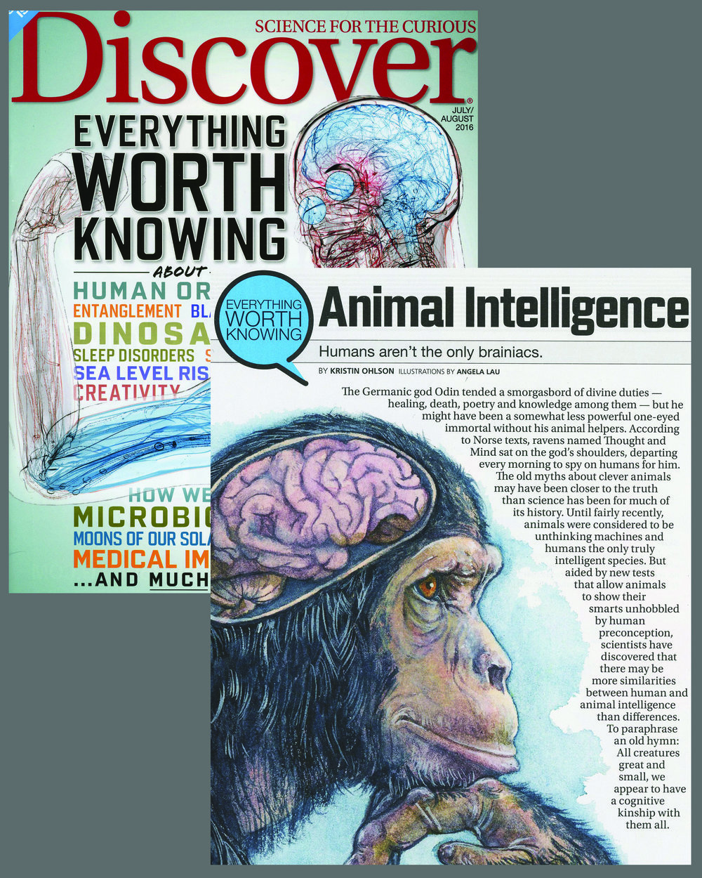 "Everything Worth Knowing About ... Animal Intelligence - ""Humans aren't the only brainiacs."" By Kristin Ohlson Published in Discover Magazine for July/August 2016 issue, page 66-69. Online Article here AD Alison Mackey Article on different types of intelligence in animals"