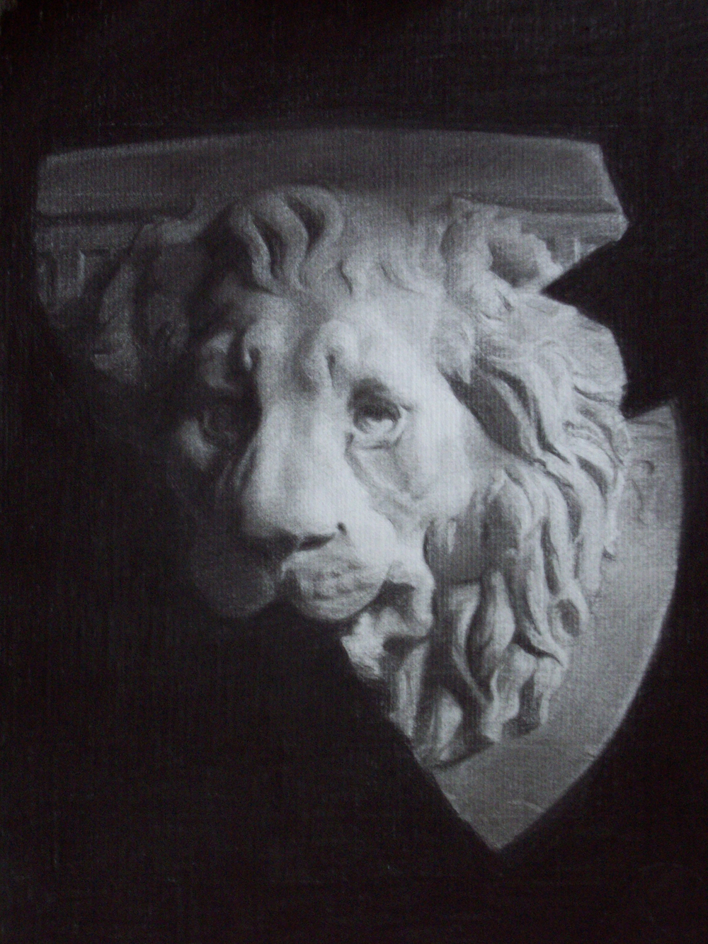 lion cast.jpg
