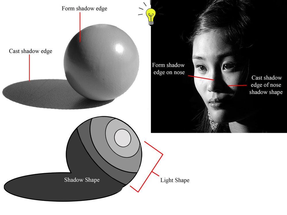 HW 4 Form vs cast shadow edges.jpg