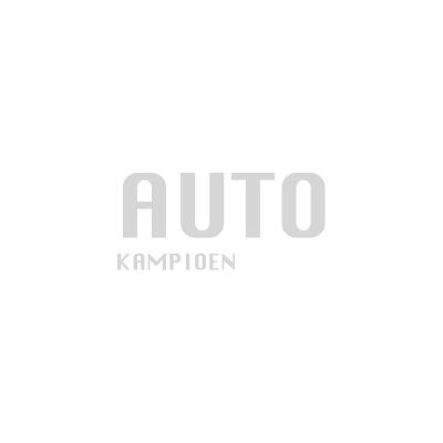 autokampioen.png