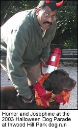 Homer Dog Parade 2003.jpg