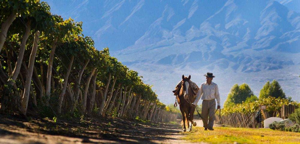 wine-tour-in-argentina-PIE-EXPERIENCES-e1477586620560.jpg