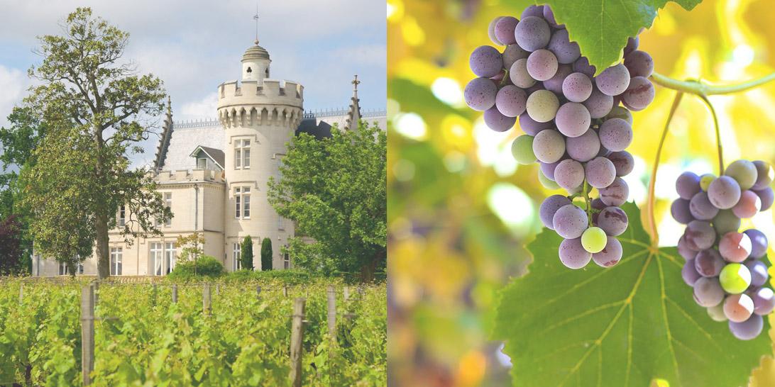 wine17-5.jpg
