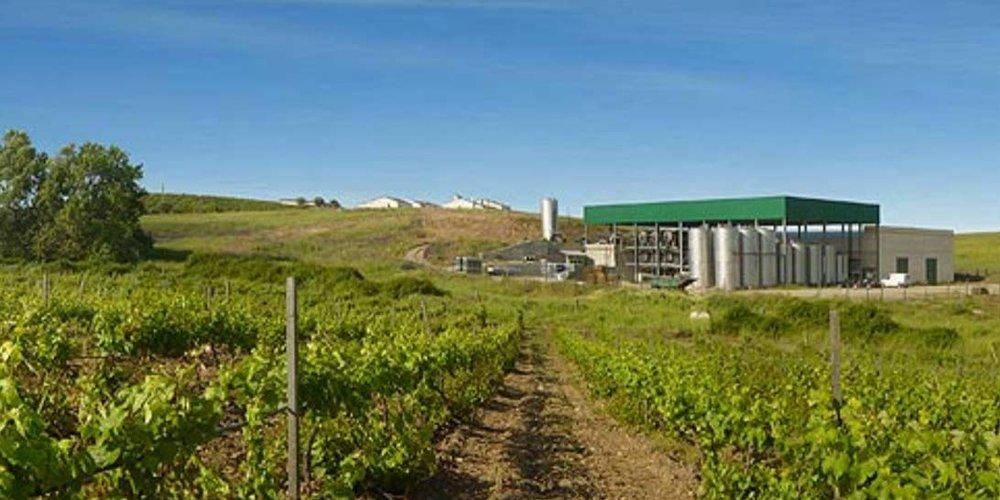 ervideira-winery.jpg