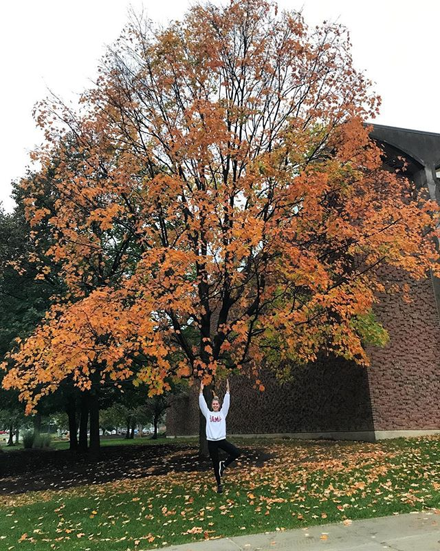 @bri_veryy in front of the best tree on campus for #treeposetuesday 🍂 #bearcat4life