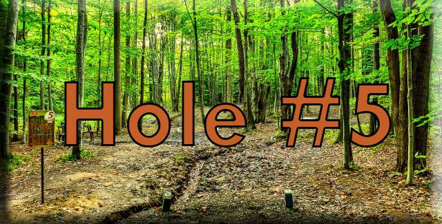 Hole5 (640x325).jpg
