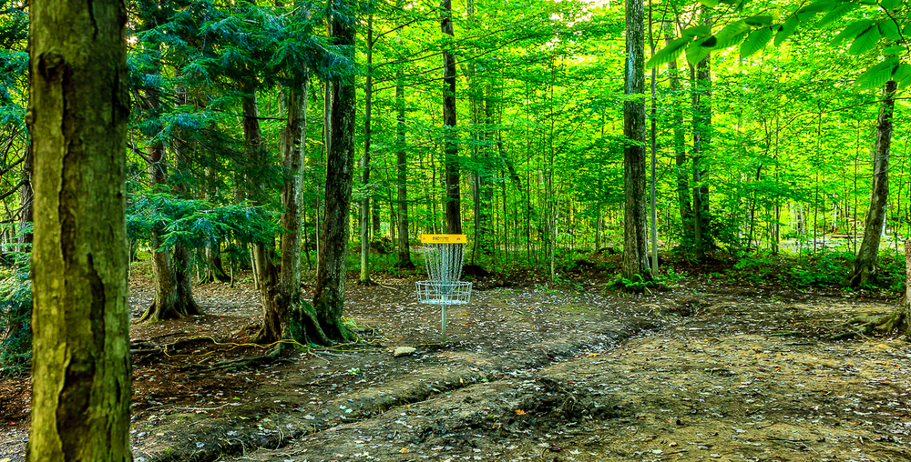 Hole #11 Basket Location