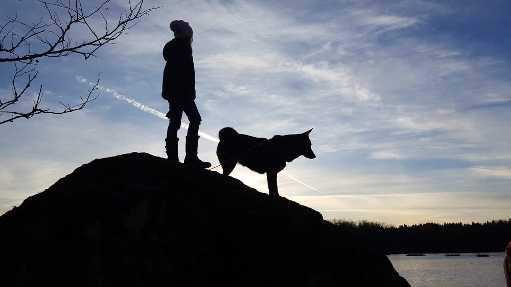 It may sound like a lot of work, but if you have a best friend, or ever had one, you know you are entirely capable. It is never too late, your situation is never too dire, and your dog is never too old.